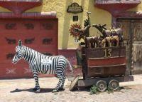 Yard Art Mexico