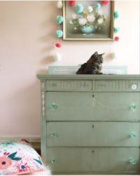 Kitty On A Dresser