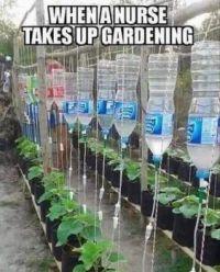 a nurse gardening