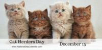 Today Is Cat Herders Day!!