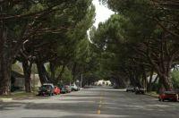 Shady street Lompoc California