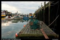 Lobster Traps & Fishing Boats Portland Maine