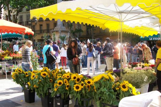 Buying Sunflowers in Provence