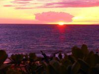 Cheryl's Maui Vacation