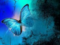 Theme: All Things Blue - Butterfly
