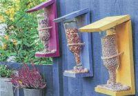 Birds Colorful Bird Feeders