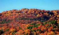 OZARKS COLORS OF FALL 1