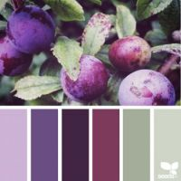 nature-colors-palette-design-seeds-jessica-colaluca-16