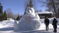 Theodore, the snow bear