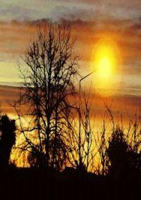 Sundown Distortion