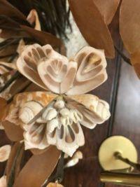 Shell Flower 2