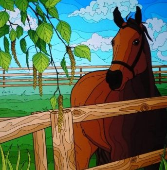 Horse in corral . . . . .