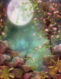 Cherry Blossum Moon