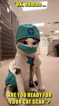 Ready for your cat scan