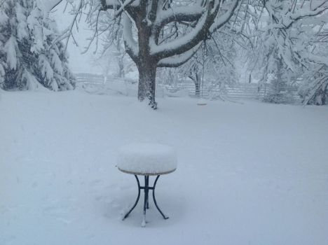 Snow 'cake' on table; Virginia U.S. 2013