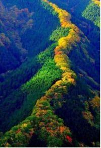 God's Handiwork, The Blue Ridge Mountains