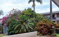 Moira's garden