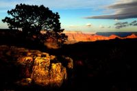 Canyon Beauty