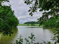 Dnes u rybníka - Today by the pond