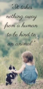 """1  ~  """"It takes nothing away from a human ..."""""""