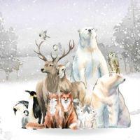 Polar Bear, Fox, Deer, Owl, Elk, Penguins, Birds, Rabbits