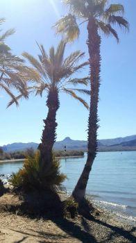 Lake Havasu in AZ