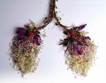 Breathe Flowers