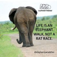 Life is ..... :-)