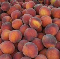 Peaches Jordan