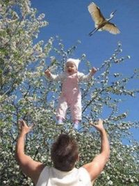 Rare Photo of a Stork delivering a Baby.