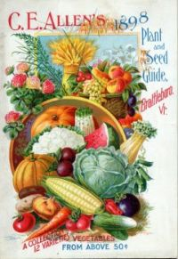 Vintage plant and seed guide