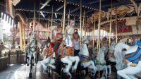 Merry Go Round, Disney World