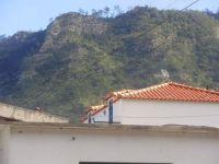 223Faial--Madeira