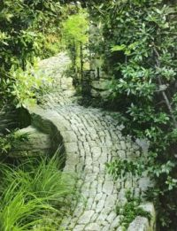 A Quiet Shady Walk  Down Nature's  Green Textured  Pathway
