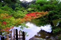 Kinkakuji Gardens
