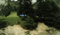 Wingsuit between pines