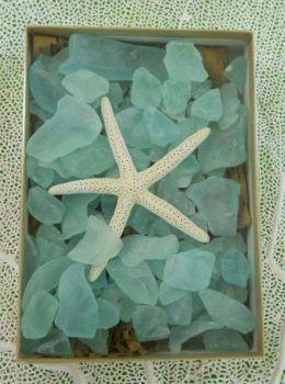 starfish and sea glass