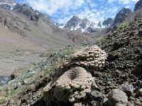 Aconcagua 6961 m