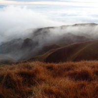 Mt. Pulag is known for the sea of clouds...