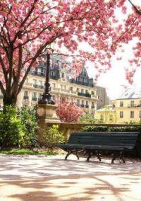 Springtime in Paris 1