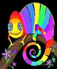 Rainbow Chameleon and Flowers by Nick Gustafson