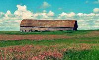Saskatchewan - Barn near Lumsden