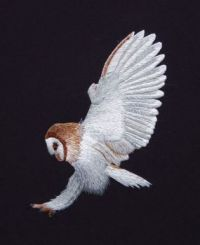 Embroidery Barn Owl on Pinterest  by Ruth Norbury