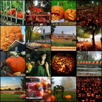 Halloween Mosaic by Under a Blue Moon on flickr