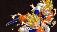 DBZ Goku vs Majin Vegeta