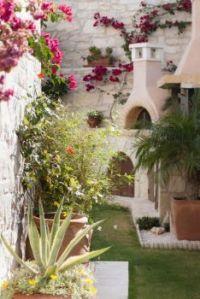 Greek-garden-Crete-Eleni-Psyllaki-1-gardenista