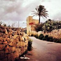 Rural Marsaxlokk, Malta