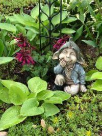 Little visitor in the garden