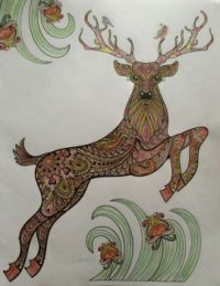 Deer - coloring book