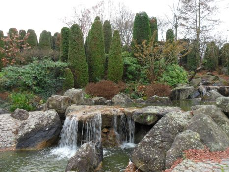 Japanischer Garten Bonn